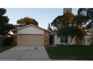 12838 Tallowood Drive, Riverview FL