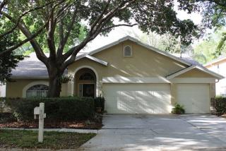 9316 Heritage Oak Court, Tampa FL