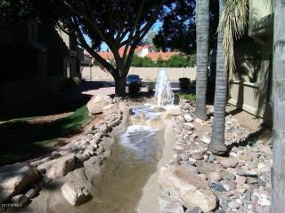 10115 East Mountain View Road #1045, Scottsdale AZ