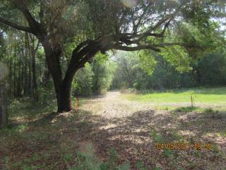 15201 Ocala Road, Weirsdale FL