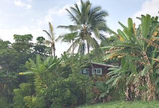 84-4979 Hawaii Belt Road, Kealakomo HI