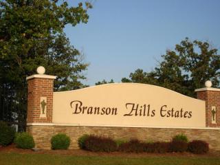 Lot 45 Phase 6 Branson Hills Esstates, Branson MO
