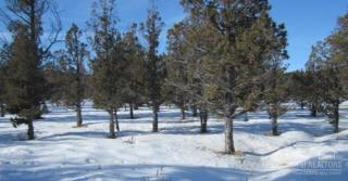 11250 Southeast Spring Brook Court, Prineville OR