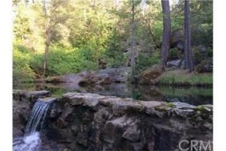145 Shadow Creek Road, Berry Creek CA