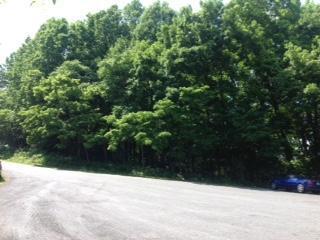 92 Walnut Trace Drive, Hardy VA