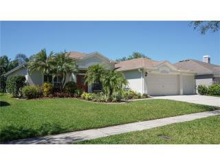 6017 Palomaglade Drive, Lithia FL
