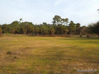 Barna, Titusville FL