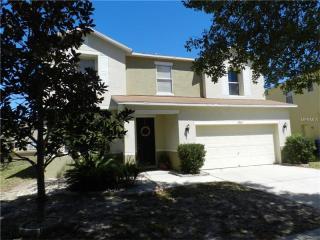 13504 Copper Belly Court, Riverview FL