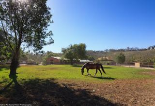 7202 Balcom Canyon Road, Somis CA