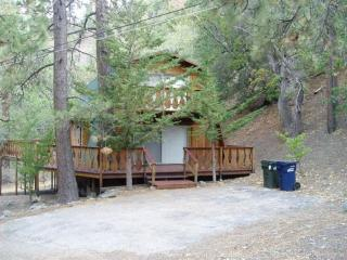 1117 Twin Lakes Road, Wrightwood CA