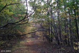 Lot 9 Witch Hazel Trail, Winchester VA