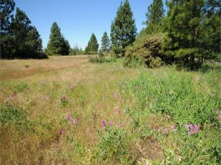 3131 Sierra Blanca Drive, Camino CA