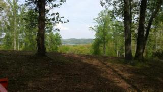 355 Eagle Ridge Drive, Rockwood TN
