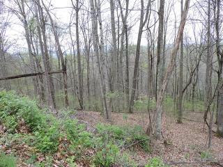 The Reserve, Burnsville NC