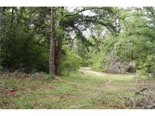 518 Hidden Oaks Drive, Elgin TX