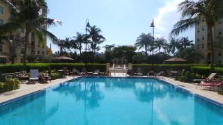 610 Clematis Street #231, West Palm Beach FL