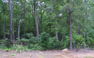 Lot 11 Hemlock Ridge Subd, Blairsville GA