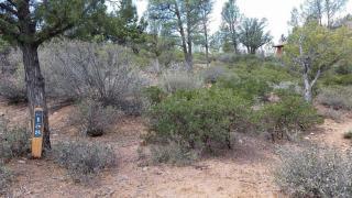 2503 East Scenic Drive, Payson AZ