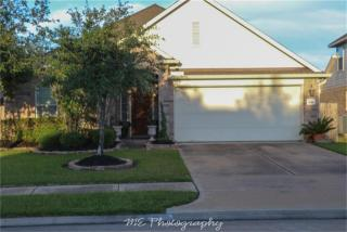 4910 Ivory Meadows Lane, Houston TX