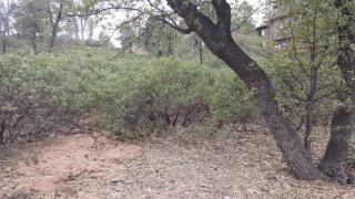 2207 East Grapevine Drive, Payson AZ