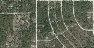 14363 Ermine Owl Road, Weeki Wachee FL