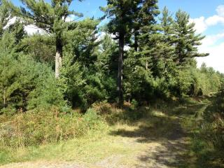 Lot 16 Crystal Lane, Black River Falls WI