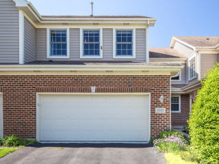 13371 Ash Court, Palos Heights IL