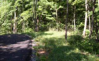 LOT18 Oak Ridge North Lot #18, Hayesville NC