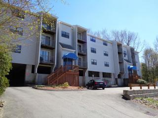 199 Perry Avenue #9, Worcester MA