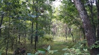 476 Saint Andrews Trail, Nekoosa WI