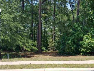 1856 Wood Stork Drive, Conway SC