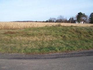 Lot 1 Brookwood Hills Dr, Big Flats, NY