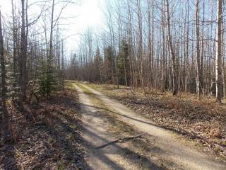 North Fork Road, Ocqueoc MI