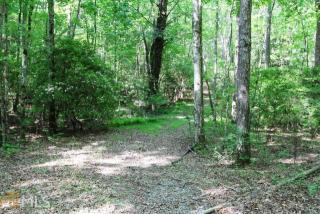 Deer Run, Blue Ridge GA
