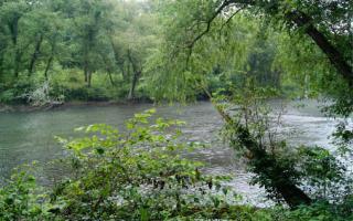 9 Toccoa Preserve Lane, Blue Ridge GA