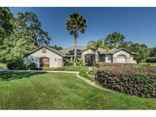 329 Forest Wood Court, Spring Hill FL