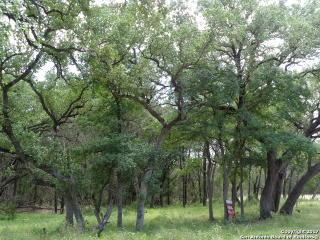 2406 Geneseo Oaks, New Braunfels TX
