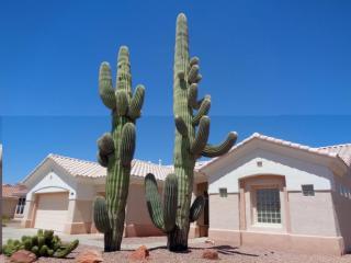 12908 West Caraway Drive, Sun City West AZ