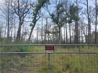 157 Rolling Pines Drive, Smithville TX