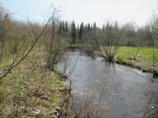 Tbd Johnson Creek Road, Limestone MI