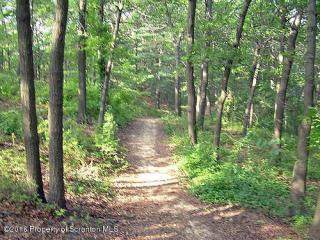 Marshbrook Road Deer Lk, Fleetville PA