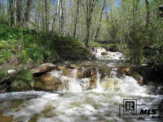 24260 Jack Creek Road, Oak Creek CO