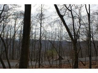 130 Squirrels Nest #5060, Big Canoe GA