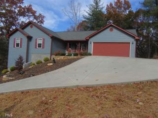 73 The Oaks Drive, Ellijay GA
