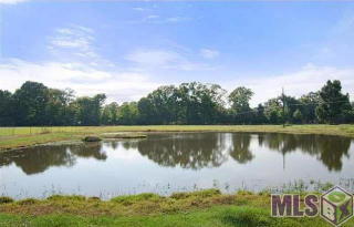 Lot C-3 Blackwater Rd, Central, LA