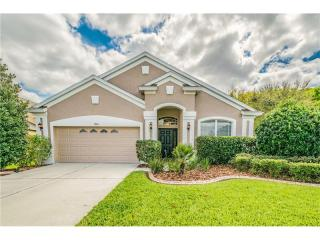 19610 Sunset Bay Drive, Land O' Lakes FL