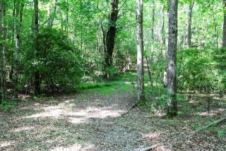 4.4 Acs Deer Run, Blue Ridge GA