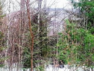 Lot 9D Rocky Lane, Greenwood ME