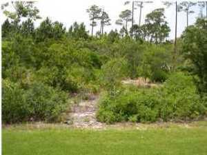 3584 Preserve Lane, Miramar Beach FL