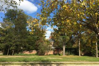 Preston, Auburn Hills MI